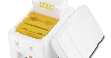 The foam hive Benefitbee